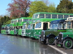 Vintage King Alfred Buses - by Ray Stenning